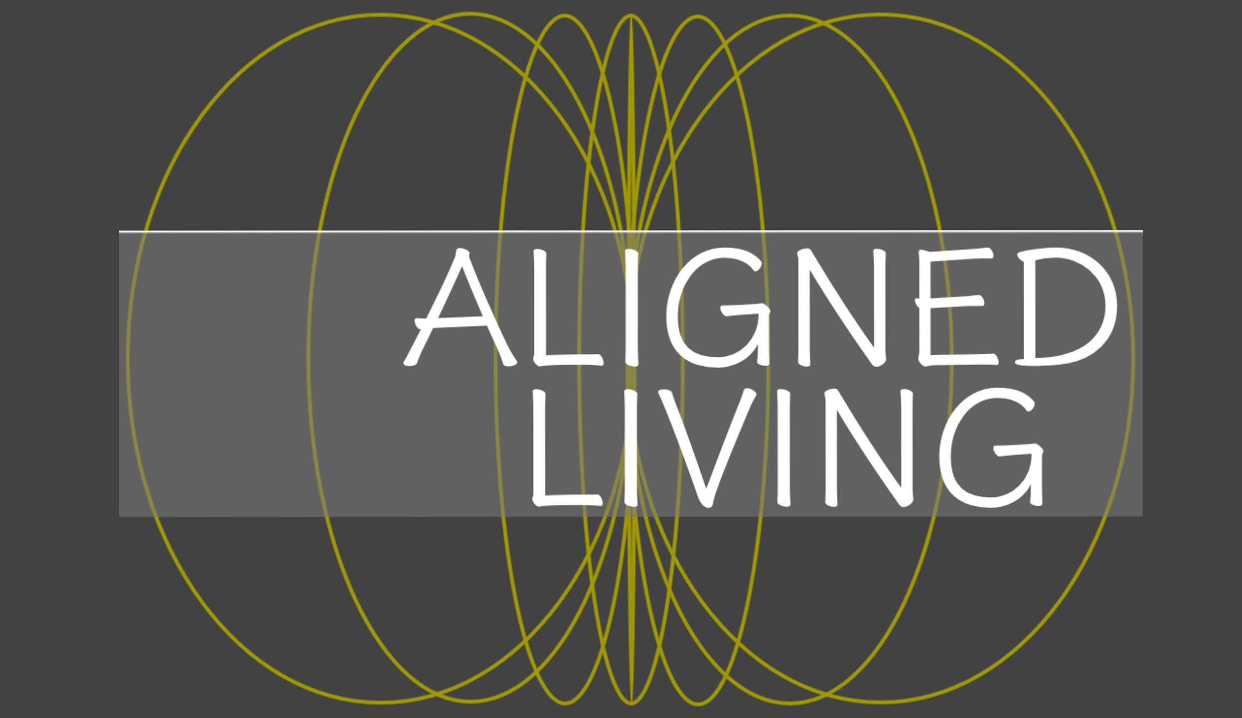 David Waldas M.S.Ed. Executive Coach, Author, and Founder of Aligned Living